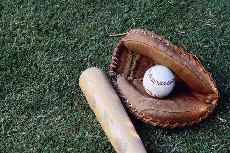 7 Интересных фактов о бейсболе