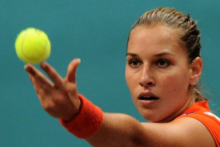 Новости тенниса 25 - 31 октября 2014