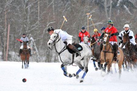 Зимнее конное поло