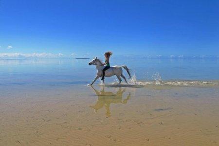 7 Самых лучших конных туров
