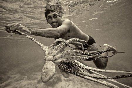 Популярный в США вид спорта – борьба с осьминогом