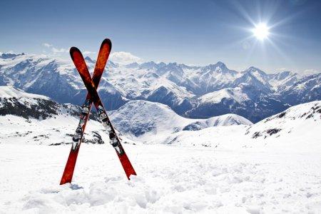 Что нужно знать о лыжах