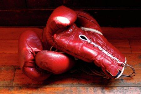 Боксерские перчатки стали причиной увеличения мозговых травм спортсменов