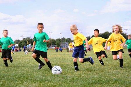 Ребенок и спортивные секции: какой вид спорта выбрать?