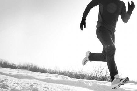 5 зимних видов спорта